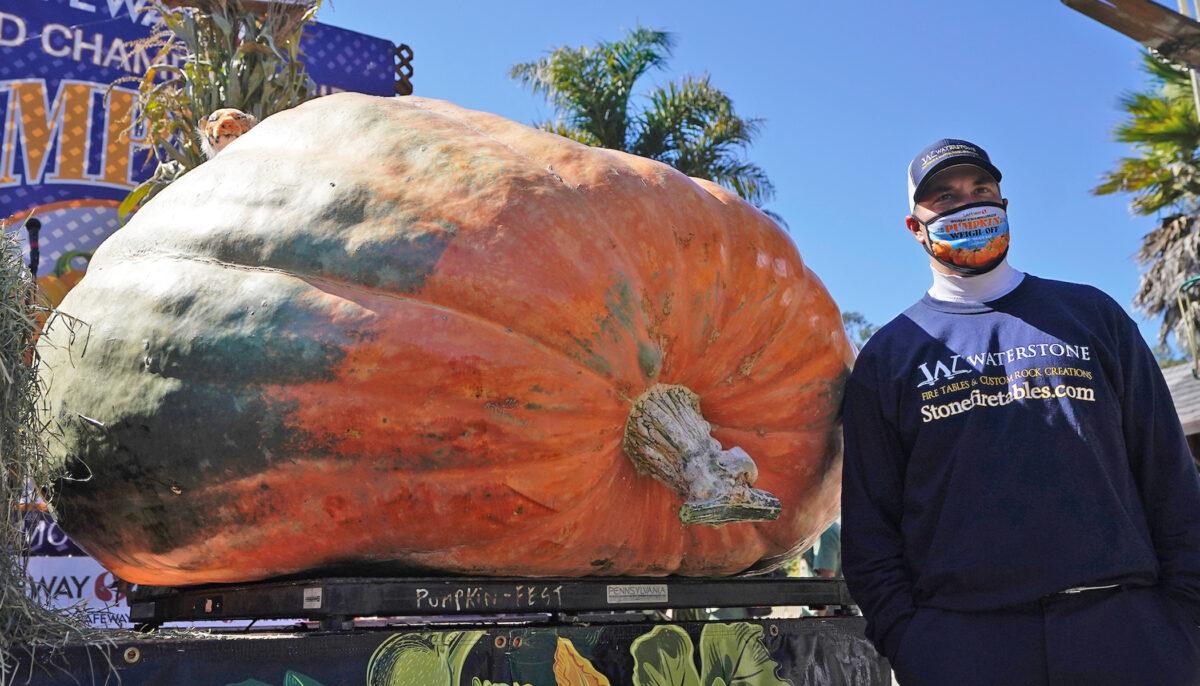 Minnesota horticulture teacher wins California contest for pumpkin weighing 2,350 lb