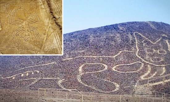 Huge 2,000-Year-Old 'Relaxing Cat' Geoglyph Found Etched into Peruvian Hillside