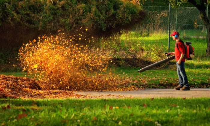 Leaf blowers can be battery-operated, electric, or gas-powered. (Smileus/Shutterstock)