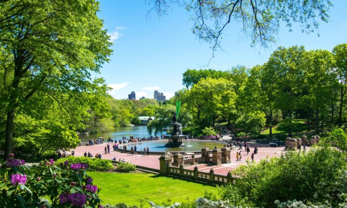 Betheseda Terrace in late spring. In the midst of the COVID pandemic, outdoor spaces like Central Park have become more important than ever, as they provide people with a safe space to unwind and get fresh air. (Courtesy of Central Park Conservancy)