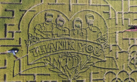 California's Largest Corn Maze Dedicates Theme to Healthcare Workers and First Responders