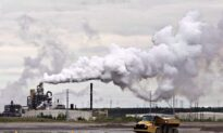 Much Room for Improvement in OECD Countries' Carbon Tax Schemes, Report Finds