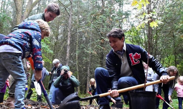 Liberal leader Justin Trudeau plants a tree with sons Xavier and Hadrien (L) during a campaign event in Plainfield, Ont., on Oct. 6, 2019. (The Canadian Press/Frank Gunn)