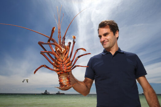 Western Rock Lobster