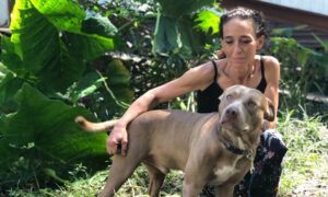 Animal Shelter in Florida Lauded for Helping Owner Reunite With Her Deaf Dog for Free