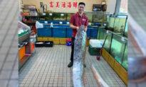 16-Foot 'Earthquake Fish' Caught After Quakes Strike Coast of Taiwan