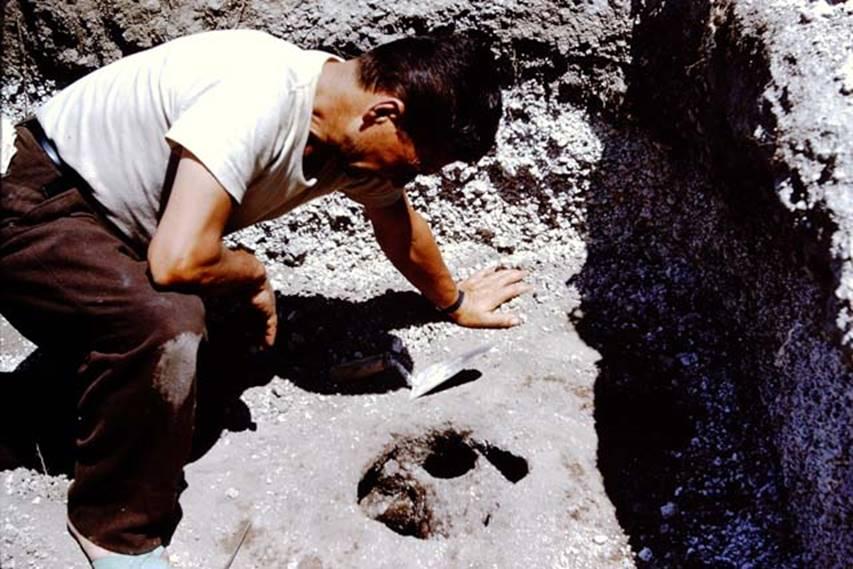pompeii cavity