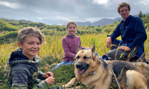 German Shepherd Survives Head Wound After Defending Family From Black Bear Attack in Alaska