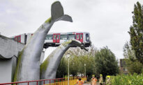 Metro Train Flew Off Raised Railway but Was Saved by Whale Tail Sculpture in Netherlands