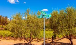 Wine Talk: Napa Valley on the Rebound