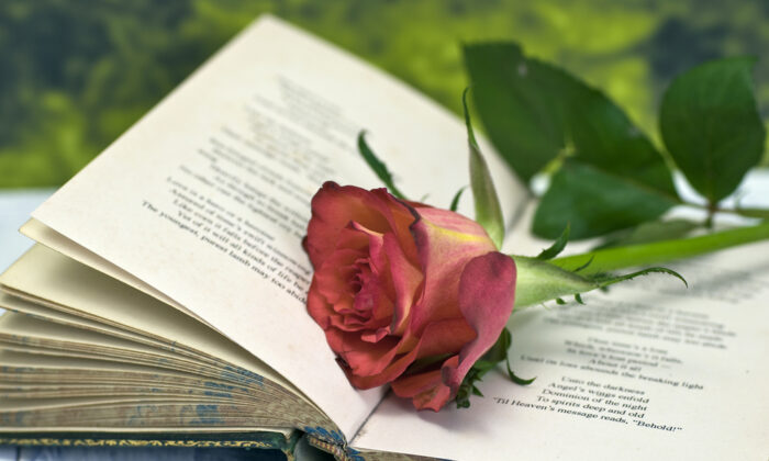 Poetry is associated with love, but it can evoke anything our minds can imagine. (Graeme Dawes/Shutterstock)
