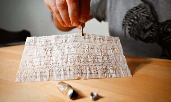 100-Year-Old WWI Carrier Pigeon Message Capsule Found Intact in France