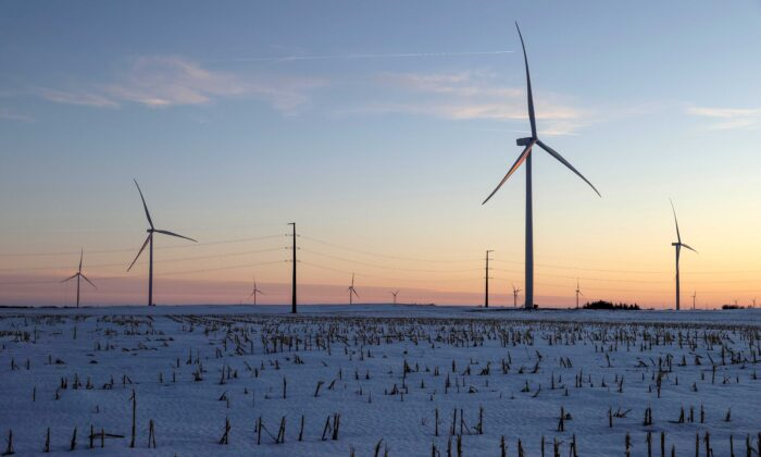 A wind farm shares space with corn fields in Latimer, Iowa, on Feb. 2, 2020. (Jonathan Ernst/Reuters)