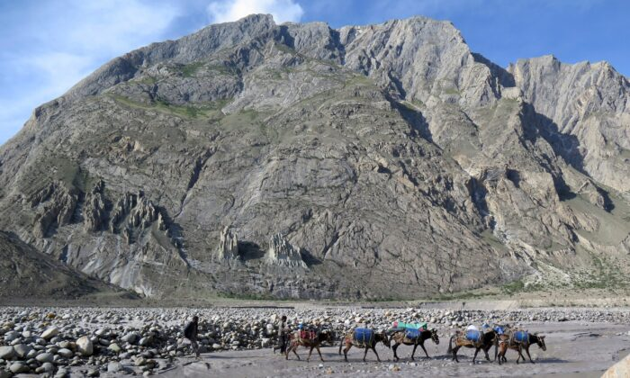 Porters and their mules make their way down from Baltoro glacier in the Karakoram range of Pakistan's mountain in the northern Gilgit region on Aug. 20, 2019. (Amelie Herenstein/AFP via Getty Images)