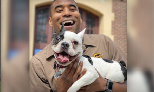 UPS Driver Snaps Selfies With the Dogs Along His Route–and His Instagram Goes Viral