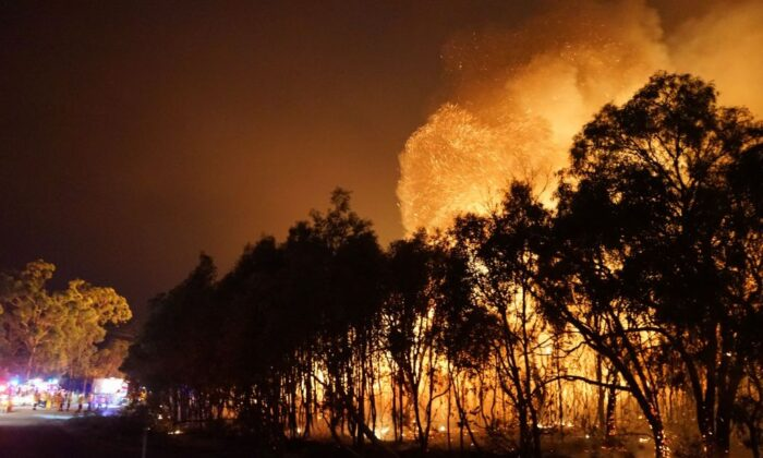 Firefighters (L) watch as a blaze moves through Deepwater National Park in Queensland on November 28, 2018. (ROB GRIFFITH/Getty Images)