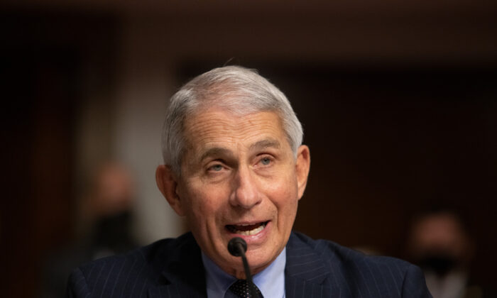 Anthony Fauci, director of National Institute of Allergy and Infectious Diseases at NIH, testifies at a Senate Health, Education, and Labor and Pensions Committee on Capitol Hill, in Washington on Sept. 23, 2020. (Graeme Jennings/Pool/Getty Images)