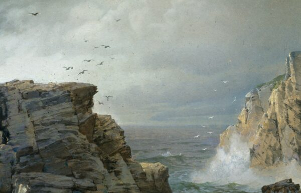 "Detail of the birds and sea spray in ""A Rocky Coast."""