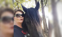 'Defeated' Horse Going to Slaughter Meets Her Savior Just in Time, Gets 2nd Chance at Life