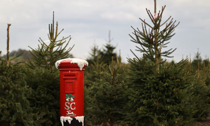 A mailbox for letters to Santa Claus is pictured at a Christmas Tree Farm, amidst the outbreak of the CCP virus, in Keele, Staffordshire, on Nov. 24, 2020. (Carl Recine/Reuters)