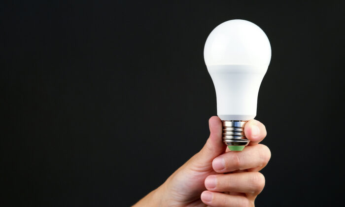LED lightbulbs are a surprising dollar-store item you can buy cheap without sacrificing quality. (Andrey Mihaylov/Shutterstock)