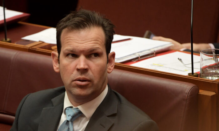 Senator Matt Canavan in the Senate at Parliament House in Canberra, Australia on July 4, 2019. (Tracey Nearmy/Getty Images)