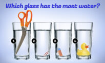 Which Glass Has the Most Water? You May Be a Genius If You Can Solve This Expert Problem