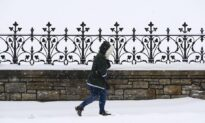 Wild Winter, Drastic Swings in Store for Canada This Year: Weather Network