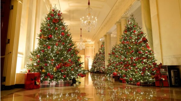 Christmas preview at the White House