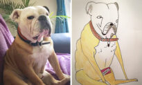 Man Posts Joke Pet Portraits Online Only to Be Flooded With Commissions, Raises 5,000 Pounds for Charity