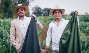 2 Mexican Friends Create Luxury 'Cruelty-Free Leather' From Dried Cactus Leaves