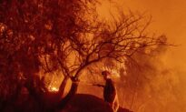 Mismanagement Contributes to Longer Fire Seasons, Researchers Say