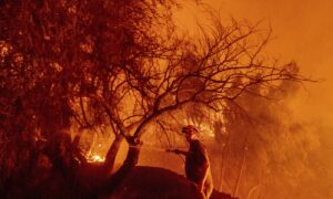 Newsom Under Fire for California Wildfire Claims