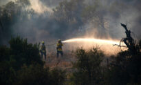 OC Firefighters Battle Rapidly Growing Wildfire in Silverado Canyon