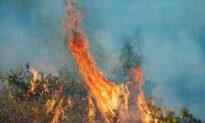 Santa Ana Winds, Red Flag Warning Return to Orange County