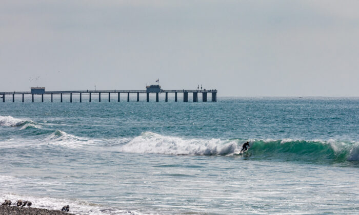 A surfer rides a wave in San Clemente, Calif., on Oct. 20, 2020. (John Fredricks/The Epoch Times)