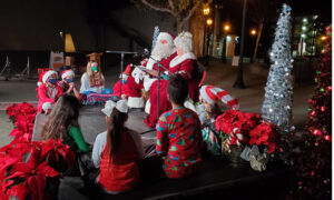 Anaheim Ushers in Holiday Season With Virtual Nutcracker Tree Lighting