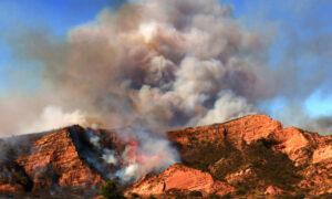 Firefighters Hold the Line, Make Progress on Orange County's Bond Fire