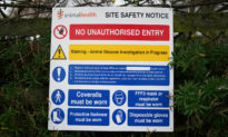 Highly Infectious Strain of Bird Flu Found on Two More English Turkey Farms