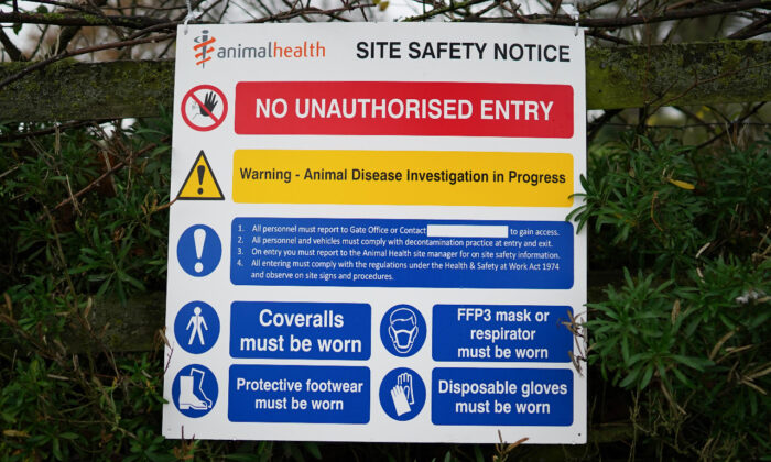 A warning sign hangs from a fence at a farm near Northallerton after an outbreak of Avian flu was confirmed at a commercial turkey fattening farm in Hambleton, North Yorkshire, on Nov. 29, 2020. (Ian Forsyth/Getty Images)