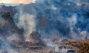 Smoke from Central California Wildfires Continues to Affect LA County