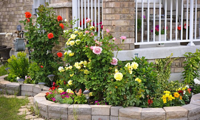 Over a period of one year, researchers found that having plants in previously bare front gardens was associated with a six percent drop in residents' perceived stress levels.(Elena Elisseeva/Shutterstock)