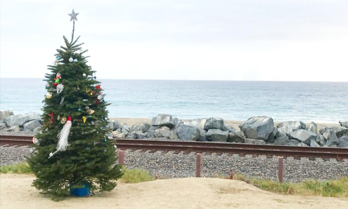 San Clemente's missing community Christmas tree has been returned to the beach trail. (Courtesy of Deborah Sheldrake-Stetson)