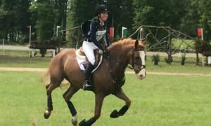 Near-Death Horse Rescued From Suspected Meth Lab Is Now a National Competitor