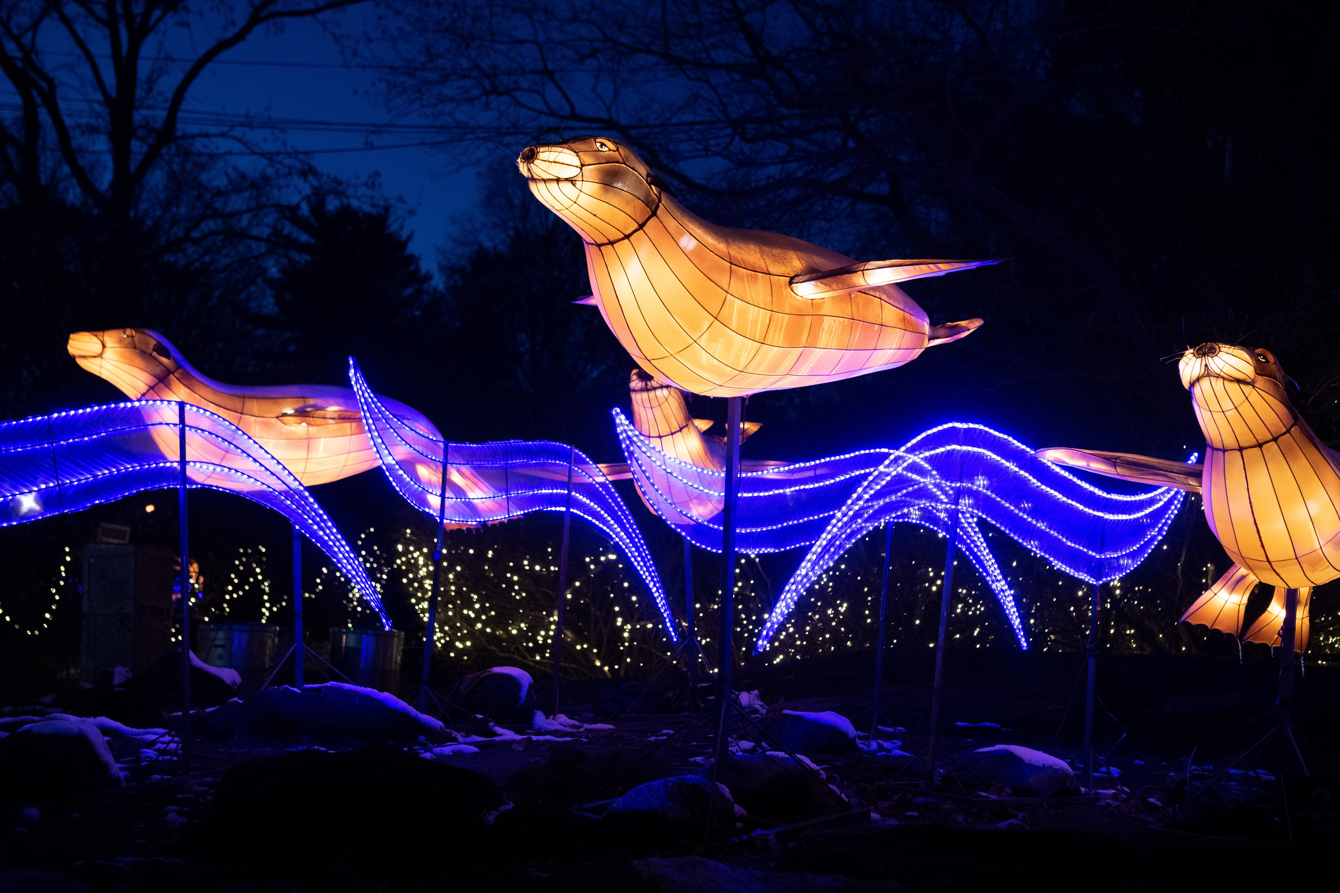 Bronx-Zoo_Holiday-Lights-in-Snow_photo-Julie-Larsen Maher_2159