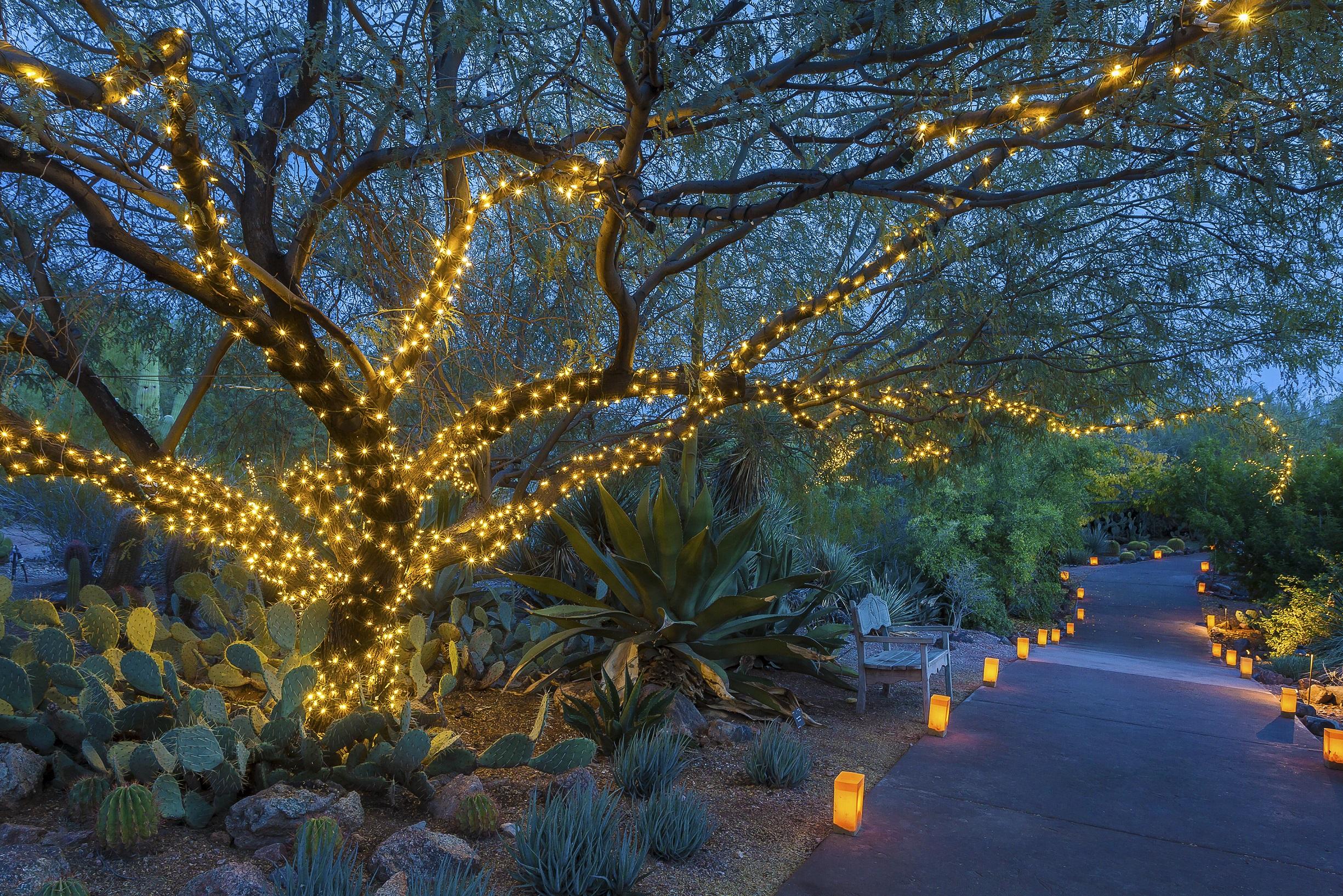 Scottsdale-087-3-4006_jpeg