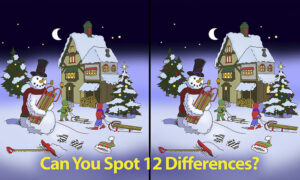 Can You Spot All 12 Differences Between These Christmas Scenes? How Sharp Are Your Eyes?