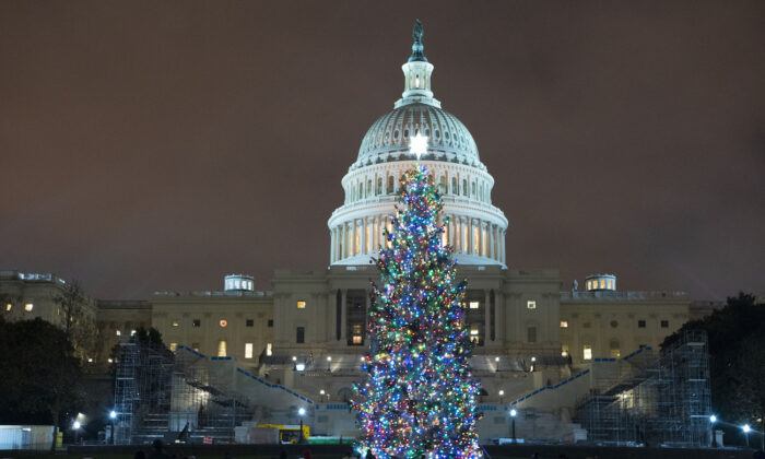 U.S. Capitol Christmas Tree is seen at the U.S. Capitol in Washington on Dec. 20, 2020. (AP Photo/Jose Luis Magana)