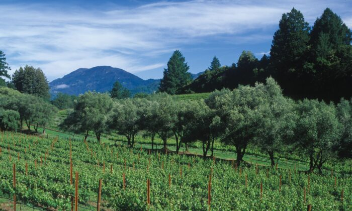 The historic Schramsberg Vineyards in Calistoga, California. (Courtesy of Schramsberg Vineyards)