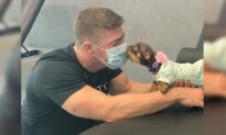 Paralyzed Puppy Nearly Starved to Death by Owners Finds Hope With Physical Therapist